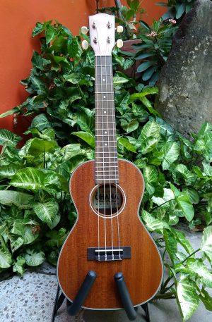 ukulele concierto ohana
