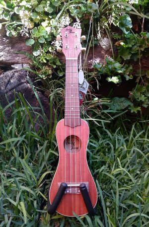 ukulele eddy finn soprano cacahuate