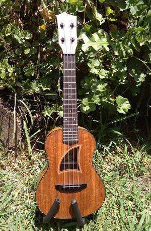 ukulele concierto Eddy Finn